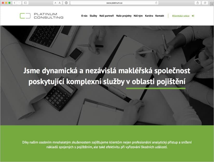 Webové stránky pro PLATINUM Consulting